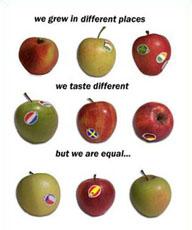 diversitauguaglianza