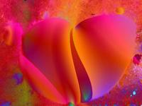 rosa petali cuore